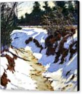 Snowy Ditch Canvas Print by Mary McInnis