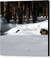 Snowy Log Canvas Print