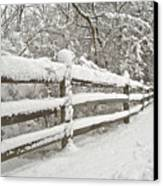 Snowy Morning Canvas Print