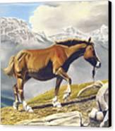 Sole Survivor Canvas Print