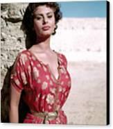 Sophia Loren, 1950s Canvas Print by Everett