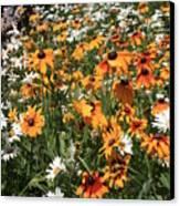 South Lake Tahoe Flowers Canvas Print