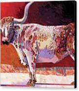 Southwest Longhorn Canvas Print