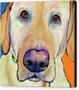 Spenser Canvas Print