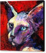 Sphynx Sphinx Cat Painting  Canvas Print
