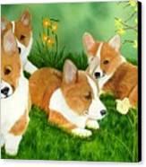 Spring Corgis Canvas Print