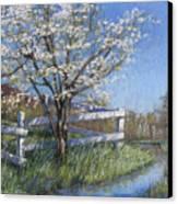 Spring Fare Canvas Print
