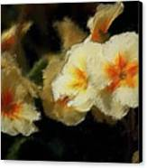 Spring Floral Canvas Print by David Lane