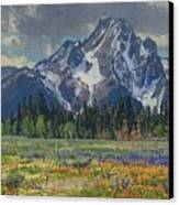 Spring In Wyoming Canvas Print