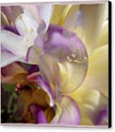 Spring Overture Canvas Print