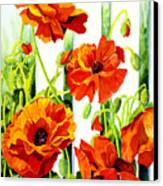 Spring Poppies Canvas Print by Janis Grau
