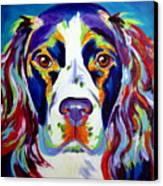 Springer Spaniel - Cassie Canvas Print by Alicia VanNoy Call