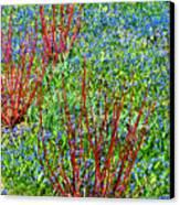 Springtime Impression Canvas Print