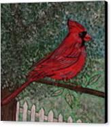 Springtime Red Cardinal Canvas Print