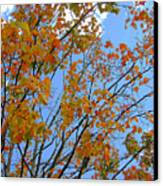 Sprinkles Of Autumn Canvas Print by Guy Ricketts