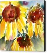 St. Charmand Sunflowers Canvas Print