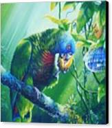 St. Lucia Parrot And Wild Passionfruit Canvas Print