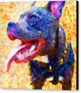 Staffordshire Bull Terrier In Oil Canvas Print