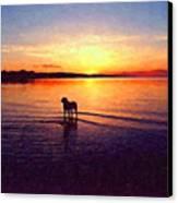 Staffordshire Bull Terrier On Lake Canvas Print by Michael Tompsett
