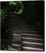 Stairway Watkins Glen 1  Canvas Print by InTheSane DotCom