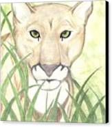 Stalker Canvas Print