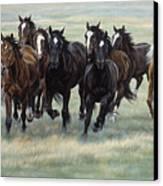 Stampede Canvas Print by JQ Licensing