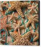 Starfish In Net Canvas Print by Garry Gay