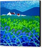 Starry Night In Wicklow Canvas Print by John  Nolan