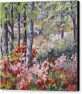 Stars Of Spring Canvas Print