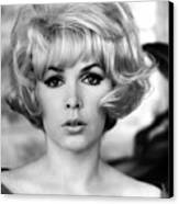 Stella Stevens, 1967 Canvas Print by Everett