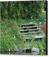 Steps In The Grass Canvas Print