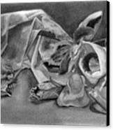 Stilllife Present Beauty Canvas Print by Rebecca Tacosa Gray