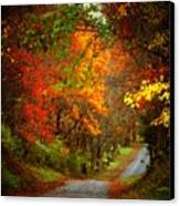 Stone Bridge Road Canvas Print by Joyce Kimble Smith