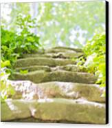 Stone Stairs Canvas Print
