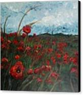 Stormy Poppies Canvas Print