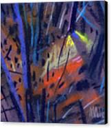 strange Lights Canvas Print