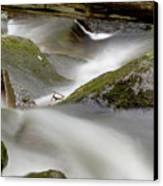 Stream In Motion Canvas Print by Jim DeLillo