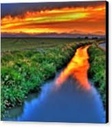 Stream Of Light Canvas Print