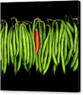 Stringbeans And Chilli Canvas Print