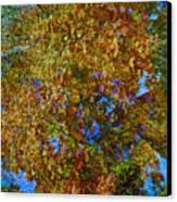Study For Autumn 1 Canvas Print