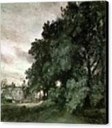 Study Of Trees Canvas Print by John Constable