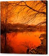 Studying The Sunset Canvas Print