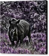 Styled Environment-the Modern Trendy Rhino Canvas Print by Douglas Barnard