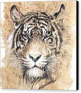 Sumatra Canvas Print by Debra Jones