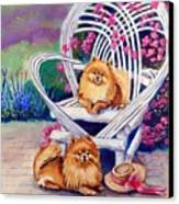 Summer Day - Pomeranian Canvas Print by Lyn Cook