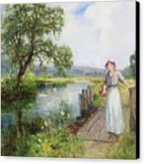 Summer Canvas Print by Ernest Walbourn
