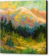 Summer High Country Canvas Print by Marion Rose