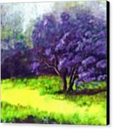 Summer Mist Canvas Print