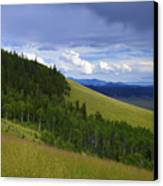 Summer On Kenosha Pass Canvas Print by Barbara Schultheis