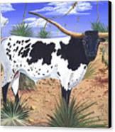 Summer On The High Mesa Canvas Print